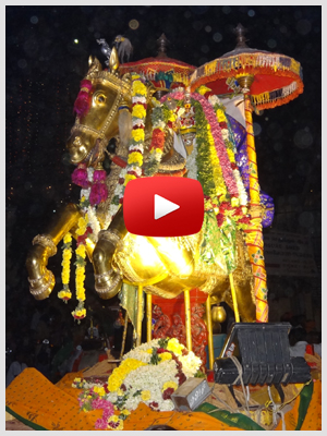 palani-festival-video-gallery